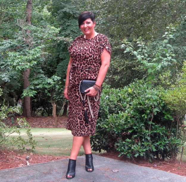 New look leopard print dress, Vince Aden shoes, Gucci purse