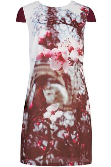 ted-baker-grey-nula-teds-25th-anniversary-print-dress-product-1-7598865-958826130_large_card